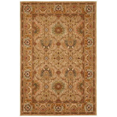 Davenport Brown Area Rug Rug Size: 6'7 x 9'8