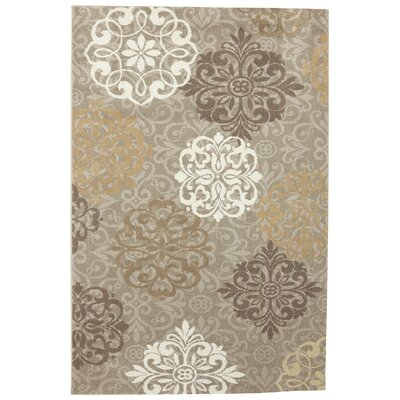 Madison Dark Beige Ornamental Open Vista Rug Rug Size: 36 x 56