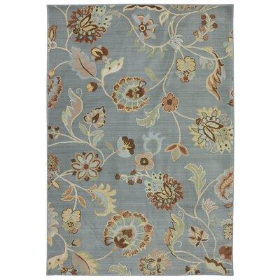 Serenity Slate Floral Sol Star Rug Rug Size: 8 x 11