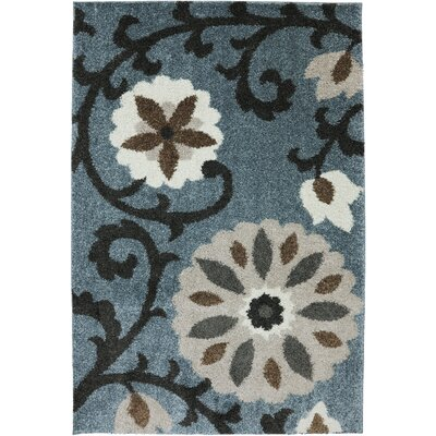 Augusta Hazelhurst Area Rug Rug Size: Rectangle 34 x 56