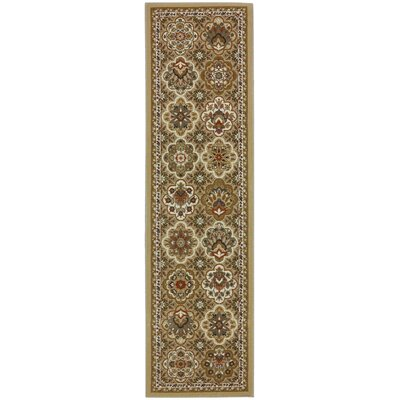 Symphony Copperhill Pale Area Rug Rug Size: Runner 21 x 79