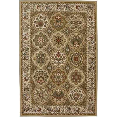 Symphony Copperhill Pale Area Rug Rug Size: Rectangle 36 x 56