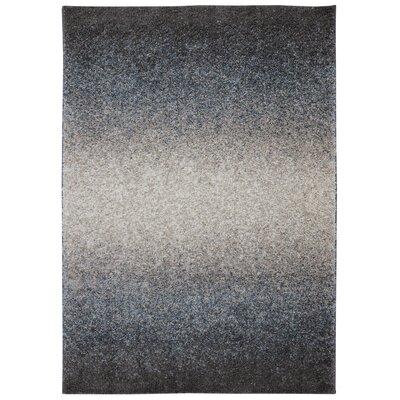 Augusta Chester Chocolate Area Rug Rug Size: Rectangle 5 x 8