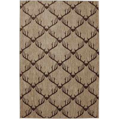 Dryden Laredo Light Camel Area Rug Rug Size: Rectangle 53 x 79
