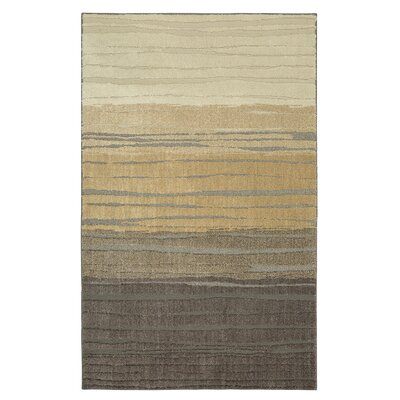 Pagosa Brown Area Rug Rug Size: 10 x 14