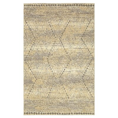 Vado Beige/Gray Area Rug Rug Size: Rectangle 10 x 14
