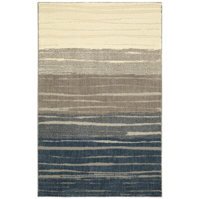 Pagosa Blue/Gray Area Rug Rug Size: Rectangle 10 x 14