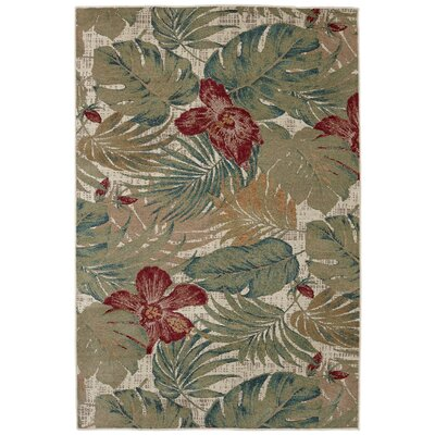 Destinations Clearwater Emerald/Brown Area Rug Rug Size: 53 x 710