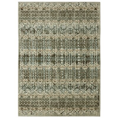 Studio Serenade Faded Daydream Gray Area Rug Rug Size: Rectangle 5'3