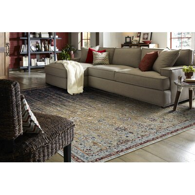 Elenora Blue/Beige Area Rug Rug Size: Rectangle 8 x 11