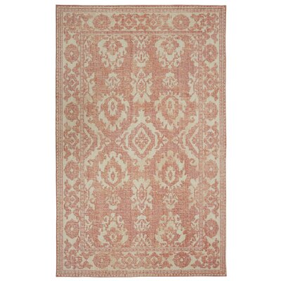 Kavya Coral Area Rug Rug Size: Rectangle 5 x 8