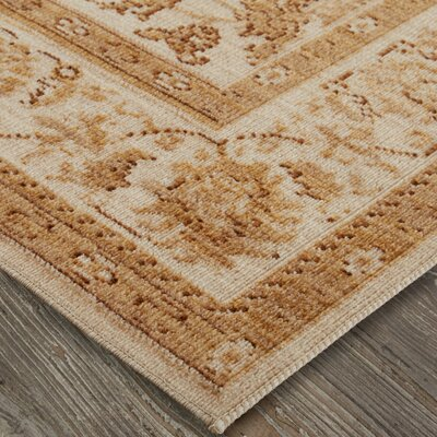 Kavya Gold/Cream Area Rug Rug Size: Rectangle 76 x 10