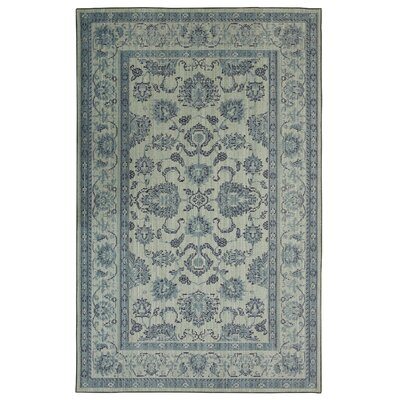 Kavya Traditional Aqua Area Rug Rug Size: Rectangle 76 x 10