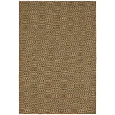 Vega Natural Indoor/Outdoor Area Rug Rug Size: Rectangle 5'3' x 7'6