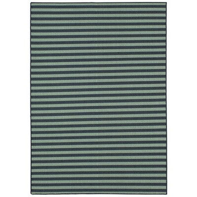 Kenison Indoor/Outdoor Aqua Area Rug Rug Size: Rectangle 53 x 76