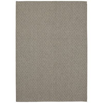 Peddireddy Indoor/Outdoor Silver Area Rug Rug Size: Rectangle 53 x 76