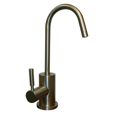 Forever Hot Water Dispenser Finish: Brushed Nickel