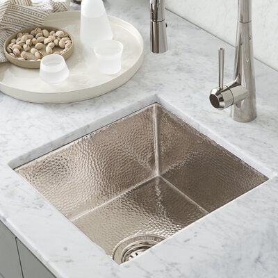 Cantina 15 x 15 Undermount Bar Sink Finish: Polished Nickel
