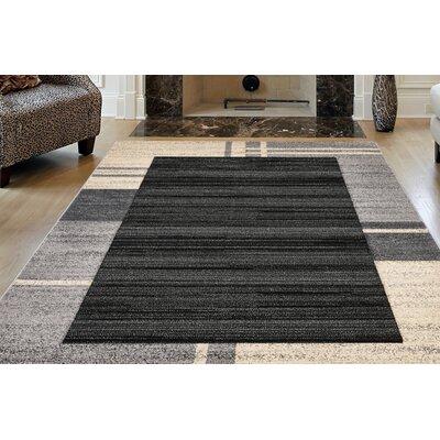 Sahara Charcoal Area Rug Rug Size: 8 x 11