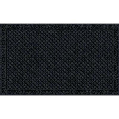 Textures Doormat Color: Onyx