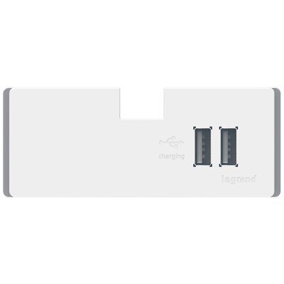 adorne USB Outlet Module Finish: White