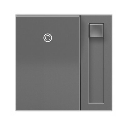 Adorne Wall Mounted Paddle Dimmer Finish: Magnesium
