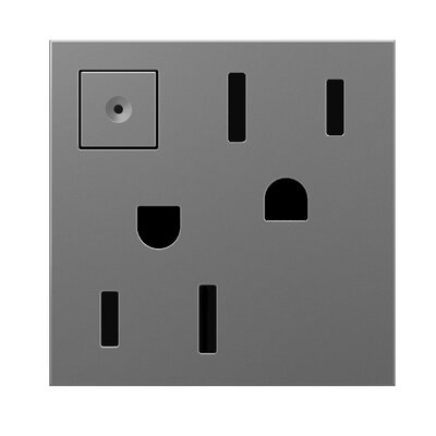 Energy-Saving Wall Mounted On/Off Outlet Finish: Magnesium