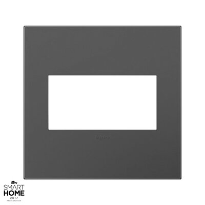 adorne 2-Gang Wall Plate Finish: Magnesium