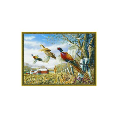 Wildlife Pheasants Novelty Outdoor Area Rug Rug Size: 31 x 44