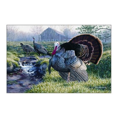 Wildlife Turkey Green/Gray Area Rug Rug Size: 3'1