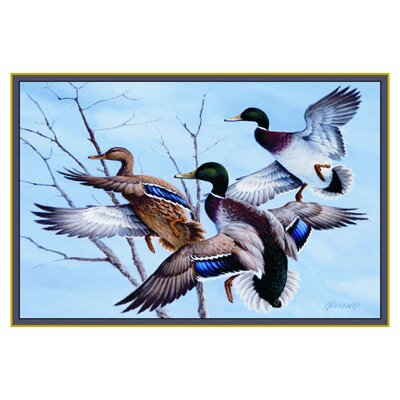 Wildlife Mallards Novelty Outdoor Area Rug Rug Size: 31 x 44