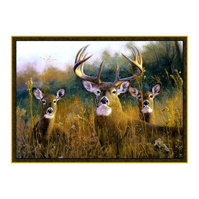 Wildlife Buck Stops Here Brown Novelty Area Rug Rug Size: 31 x 44
