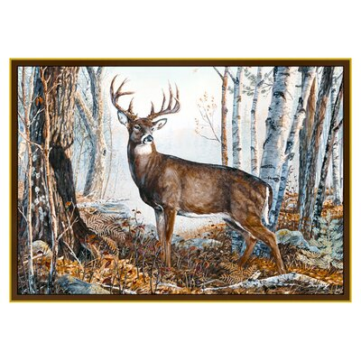 Wildlife Whitetail Novelty Outdoor Area Rug Rug Size: 31 x 44