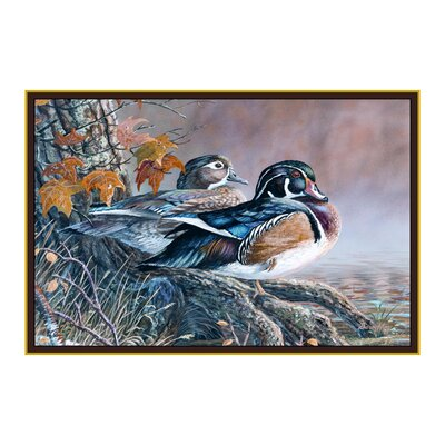 Wildlife Wood Ducks Novelty Outdoor Area Rug Rug Size: 31 x 44