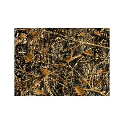 Wildlife Concealed Brown Camo Area Rug Rug Size: 31 x 44