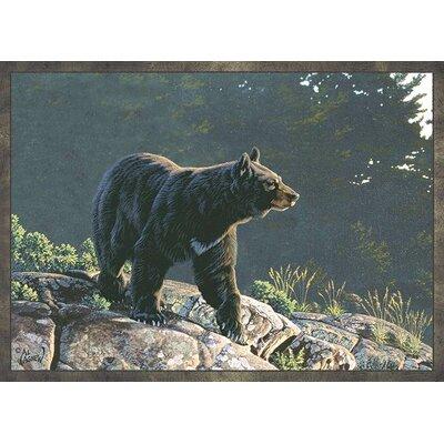 Bear on the Move Rug
