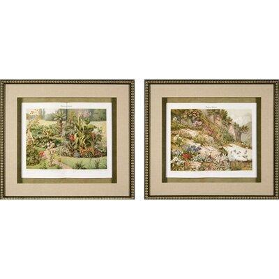 Garden Plants Framed Prints Garden Plants Framed Print