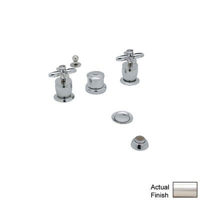 Michael Berman Double Handle Vertical Spray Bidet Faucet Finish: Satin Nickel