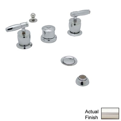 Michael Berman Double Handle Vertical Spray Bidet Faucet Finish: Satin Nickel