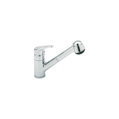 Pullout One Handle Single Hole Kitchen Faucet with Double Check Valve and Hose Finish: Polished Chrome