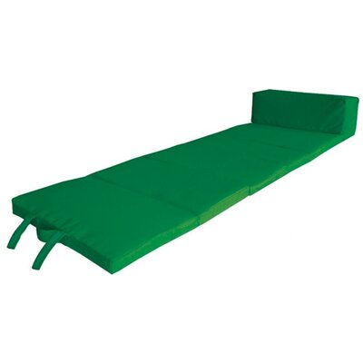 Outdoor Chaise Lounge Cushion Color: Green