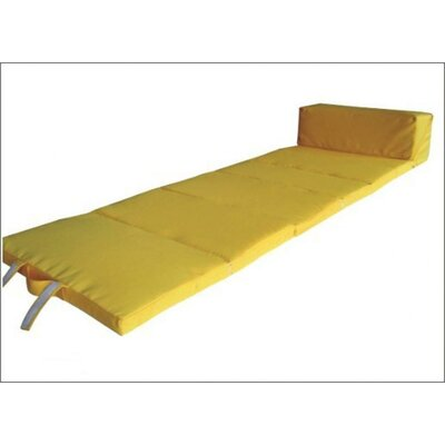 Outdoor Chaise Lounge Cushion Color: Yellow
