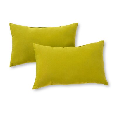 Outdoor Lumbar Pillow Color: Kiwi
