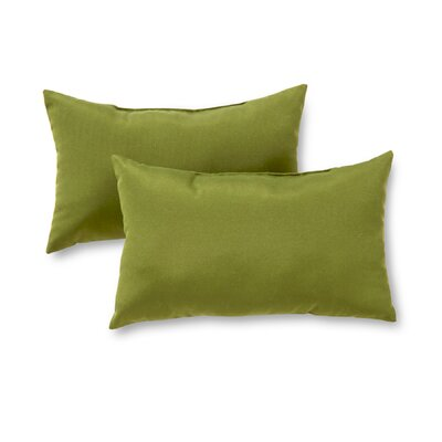 Outdoor Lumbar Pillow Color: Summerside Green