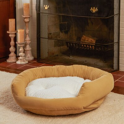 Murphy Donut Dog Bed Color: Cream, Size: Small (24 L x 24 W)