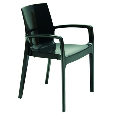 Cream Arm Chair Finish: Anthracite