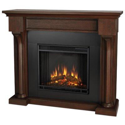 Verona Electric Fireplace Finish Color: Chestnut Oak