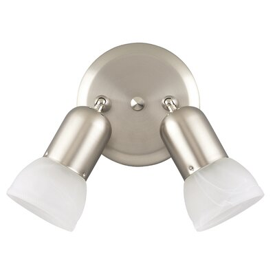Raftery 2-Light Ceiling/Wall Light (Set of 2) Finish: Brushed Pewter