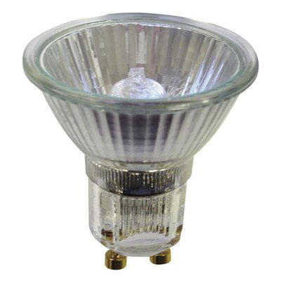 120-Volt Halogen Light Bulb (Set of 9) Wattage: 35W