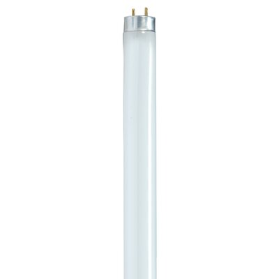 32 Watt T8 Linear Bulb in Cool White